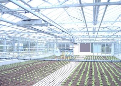 Indoor irrigation cart type II